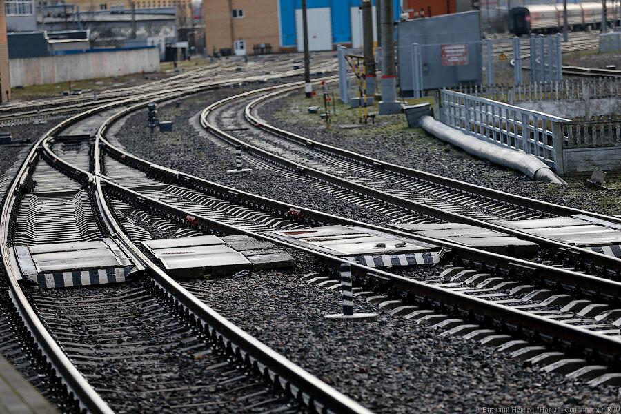 Поездам из Калининграда разрешили останавливаться в двух белорусских городах