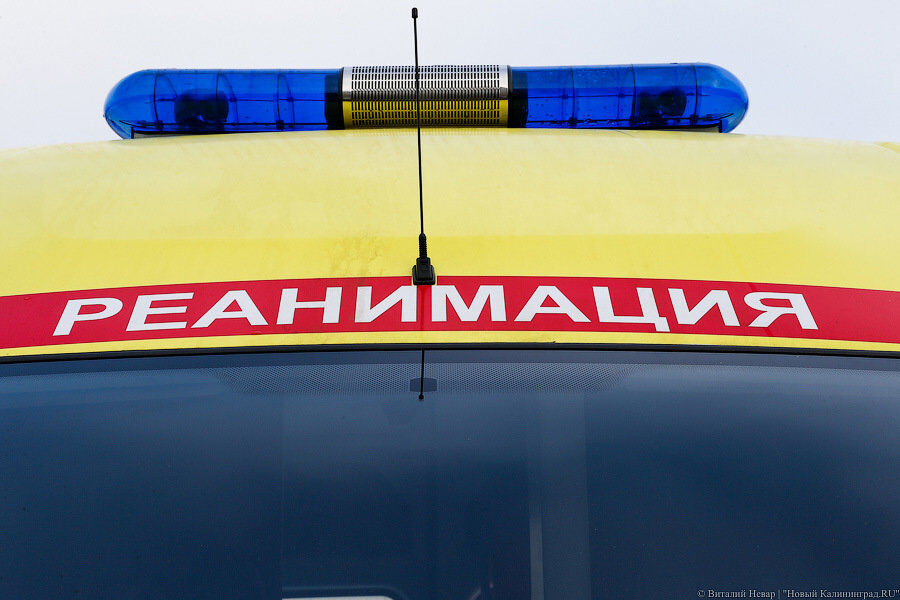 В Калининграде за сутки сбили 4 пешеходов