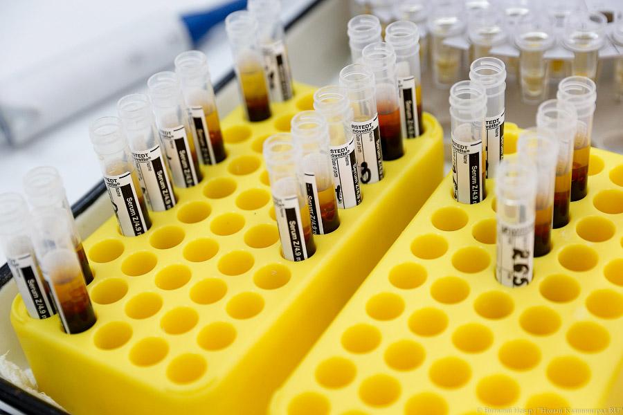 Заболеваемость корью в РФ  увеличилась  в4,3 раза