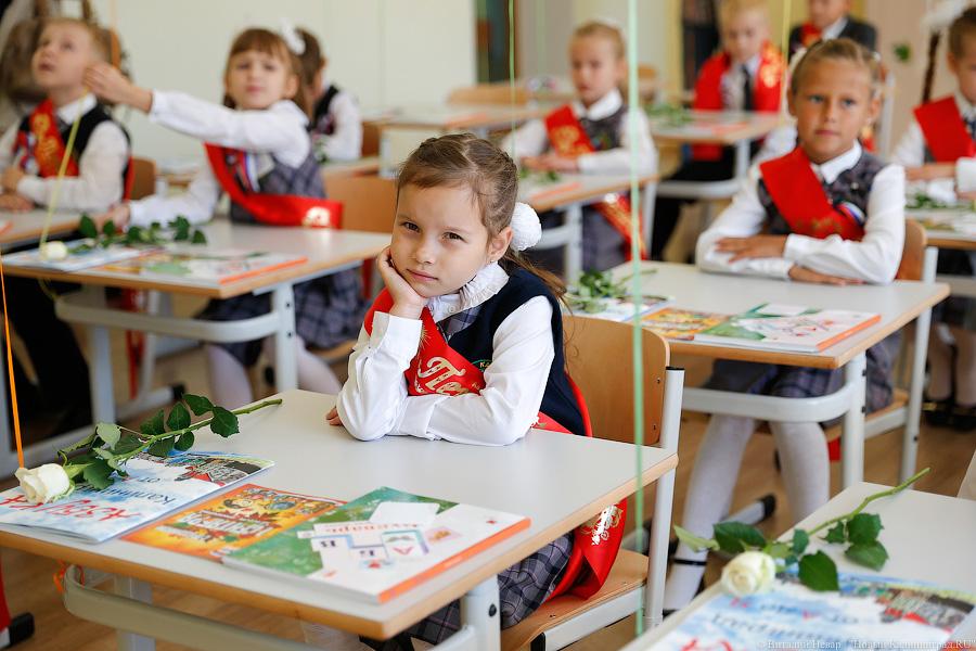 Васильева прокомментировала скандал с«Лигой школ»