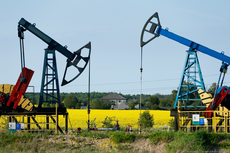 В РФ вновь растут цены набензин— Новости дня