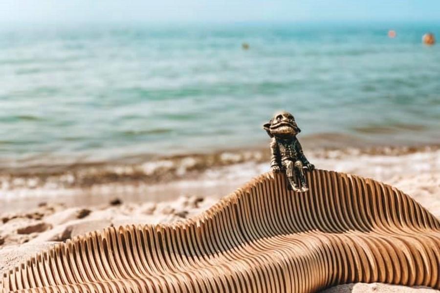 На пляже в Янтарном появился хомлин (фото)