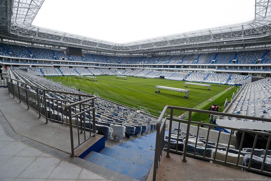 Все стадионы к чемпионату мира 2019