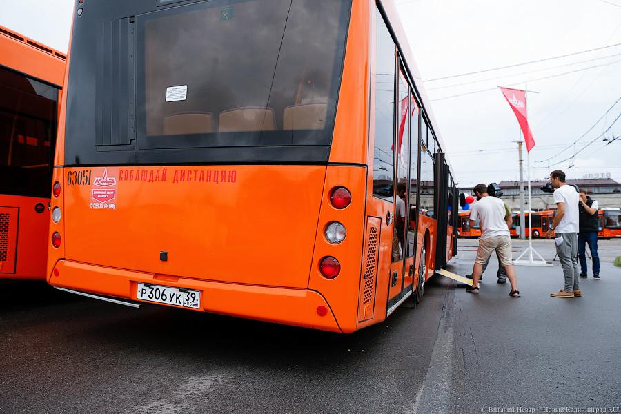 несколько автобус оранжевый картинки проходила малюсеньком приспособленном
