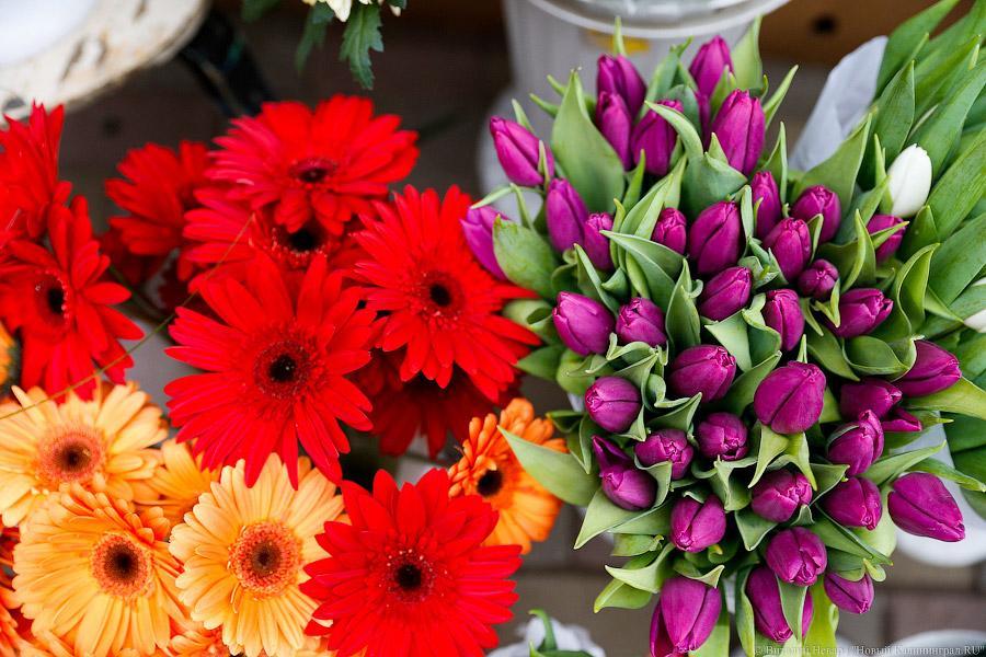 Цветы в калининграде недорого