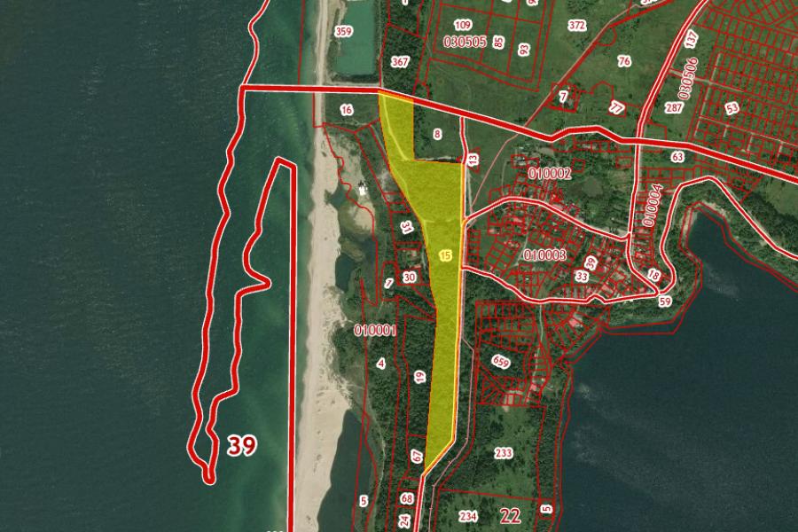 Областные власти проиграли суд по изъятию 13 га лесов в Янтарном