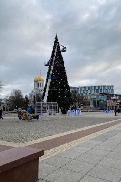 На площади Победы начали демонтировать главную городскую ель (фото)
