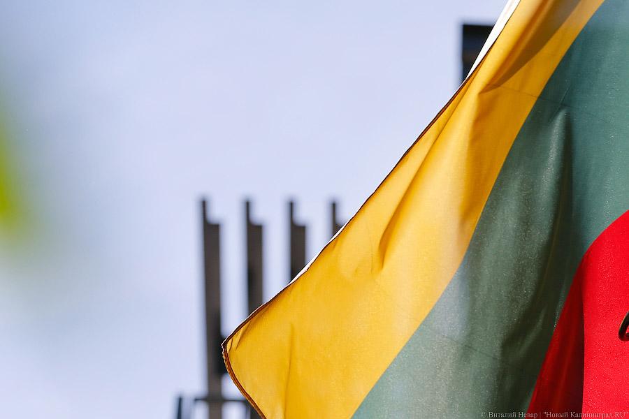 МИДРФ: «Давление» В. Путина наГрибаускайте— это «литовские инсинуации»