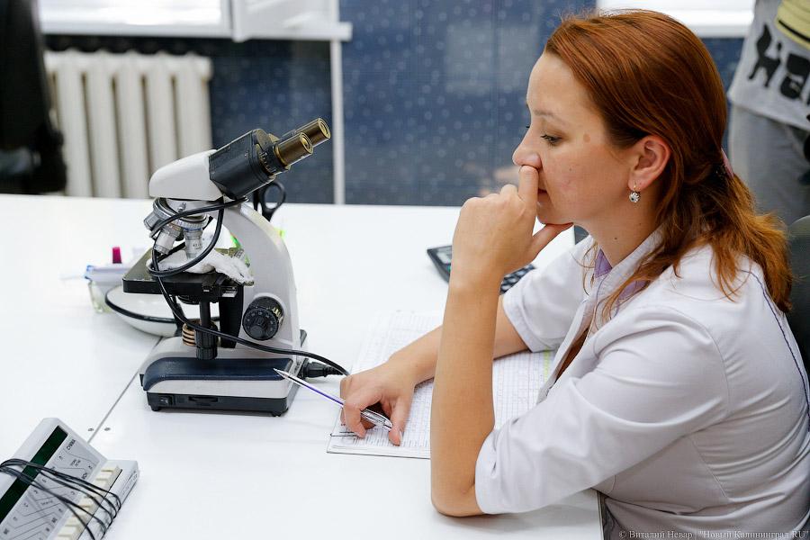Неменее тысячи больных гепатитом, Авыявлено вевропейских странах — Роспотребнадзор