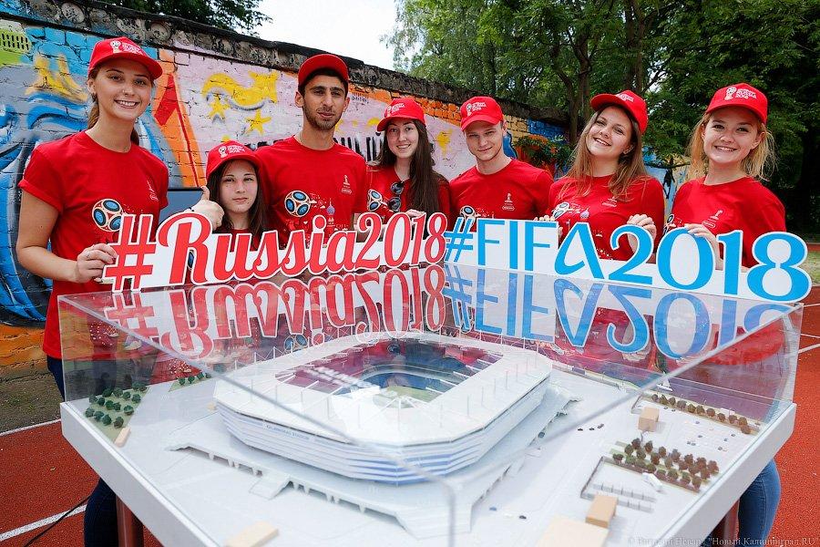 Волонтеры чемпионат калининград 2018 мира футболу по