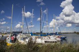 Заходите, открыто: концепция развития береговой территории яхт-клуба в Прибрежном