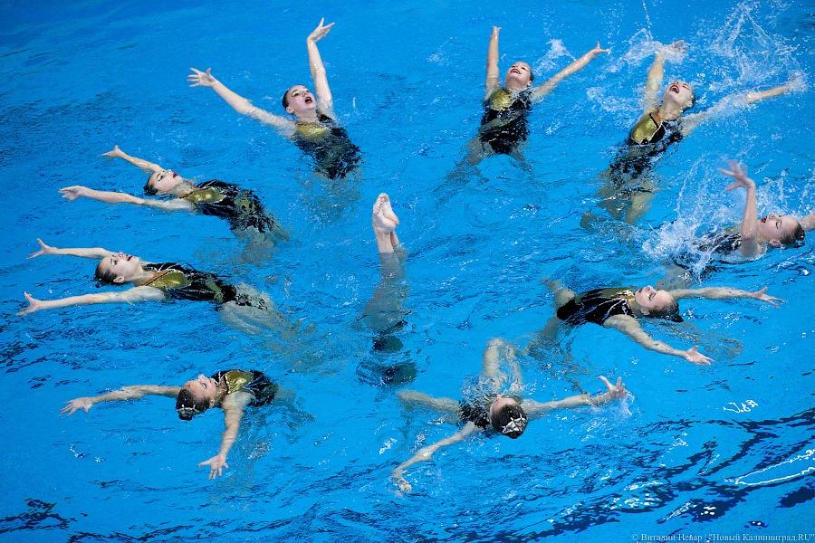 В Калининграде впервые проходит чемпионат СЗФО по синхронному  В Калининграде впервые проходит чемпионат СЗФО по синхронному плаванию