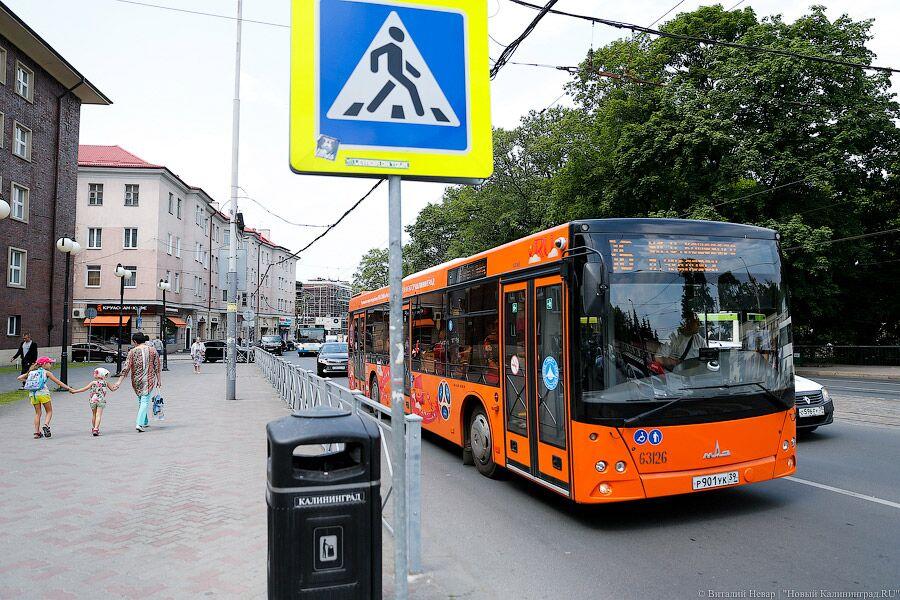 Калининградские водители смогут один день ездить бесплатно вавтобусах итрамваях