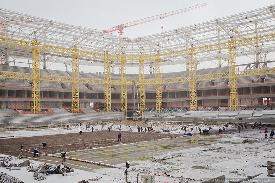отца стадион калининград фото строительства частности, одном дней