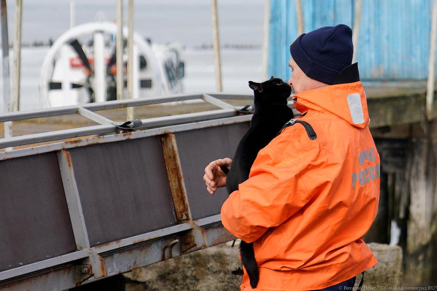 Подо мною тает лед: спасатели провели рейд на Калининградском заливе (фото)
