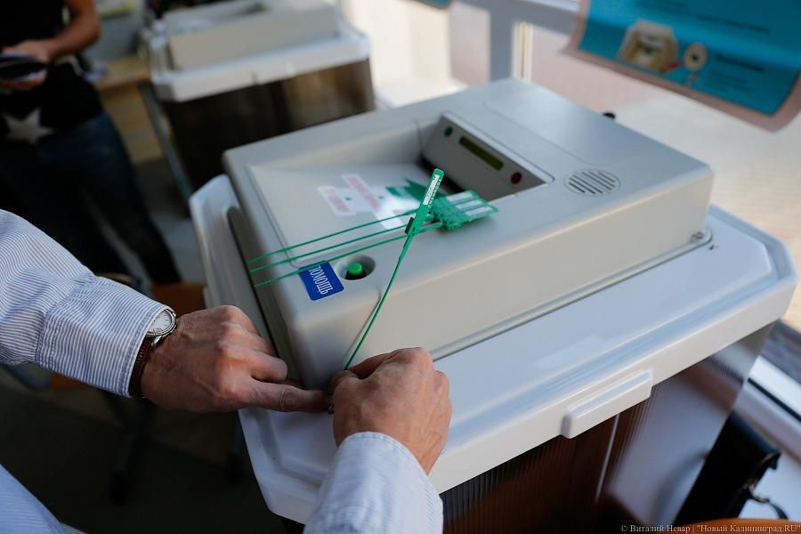 Поставщиков компьютеров для госсистемы «Выборы» и русский HPуличила всговоре ФАС