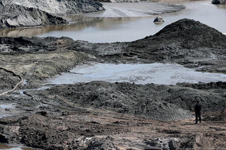 Наберегу Балтийского моря словили бригаду незаконных копателей янтаря