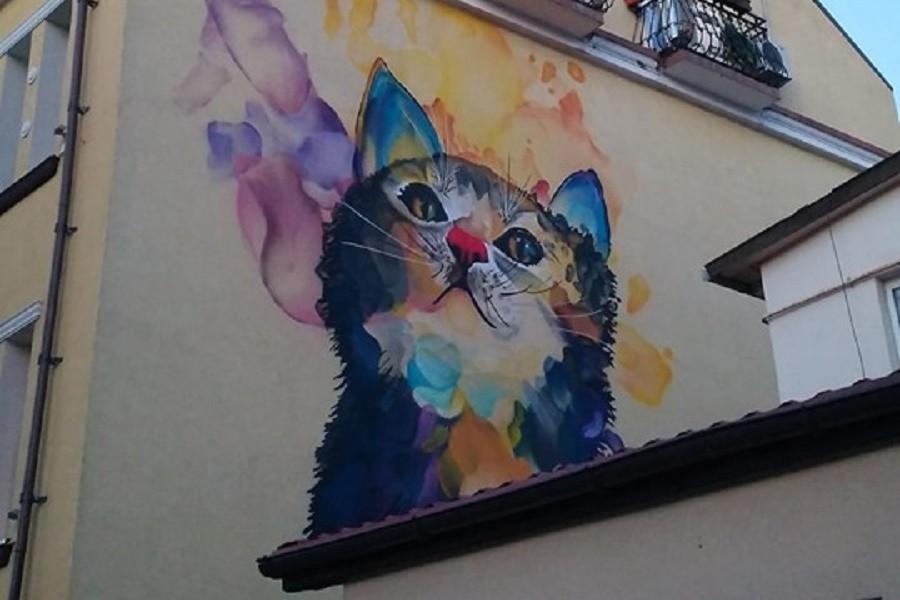 В Зеленоградске на фасаде дома появился разноцветный кот (фото)