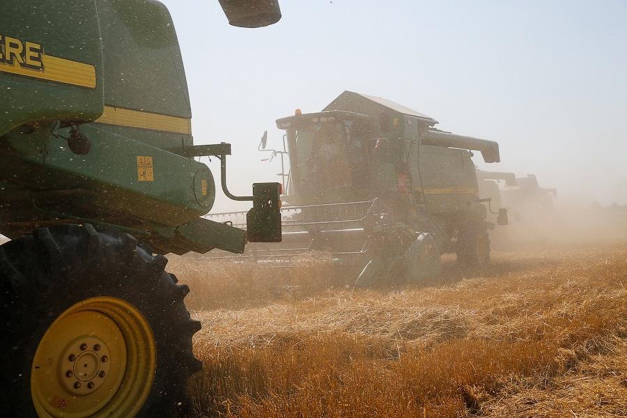 Президент РФ поручил продумать, как избежать рисков из-за высочайшего урожая