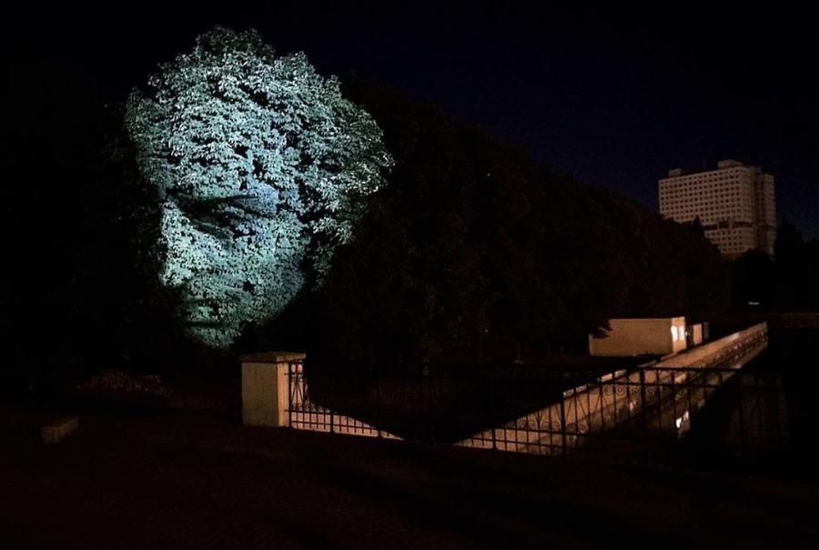 Алиханов показал светящуюся голову Канта на дереве (фото)