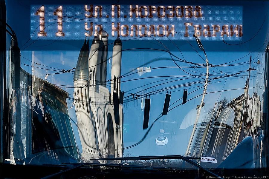 КалининградГорТранс все время лихорадит— Андрей Кропоткин